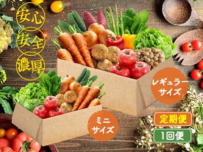 はにーびーの野菜セット(大/小)