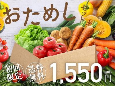 【初めての方限定】旬の厳選野菜5品おためしセット