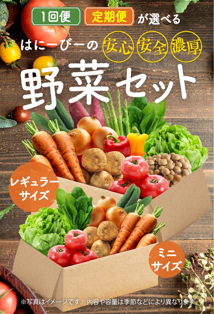 はにーびーの野菜セット