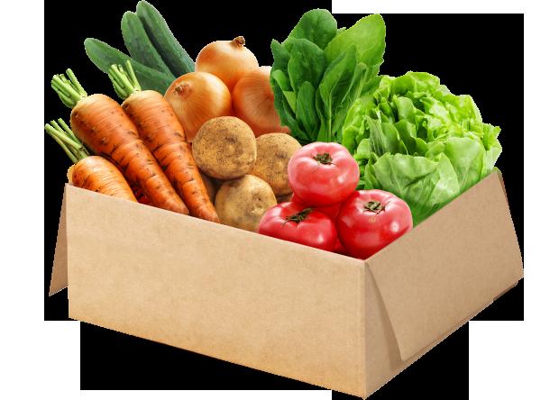 野菜セット ミニサイズ(7品目)