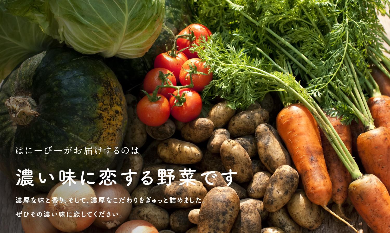 はにーびーがお届けするのは濃い味に恋する野菜です