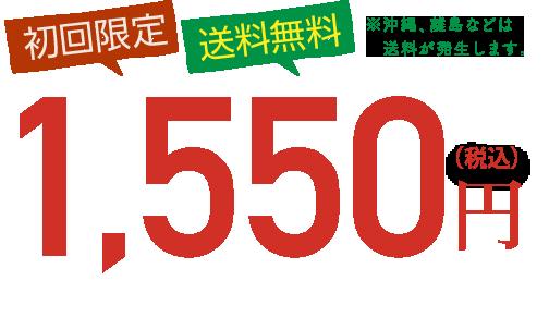 初回限定・送料無料1,550円(税込)